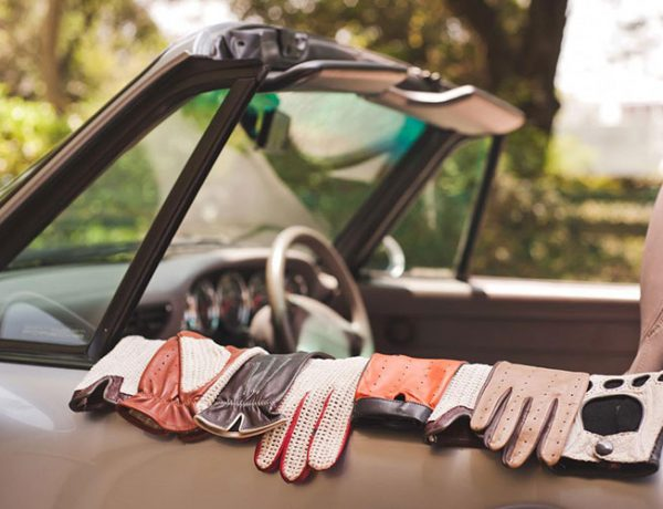 manusi pentru condus