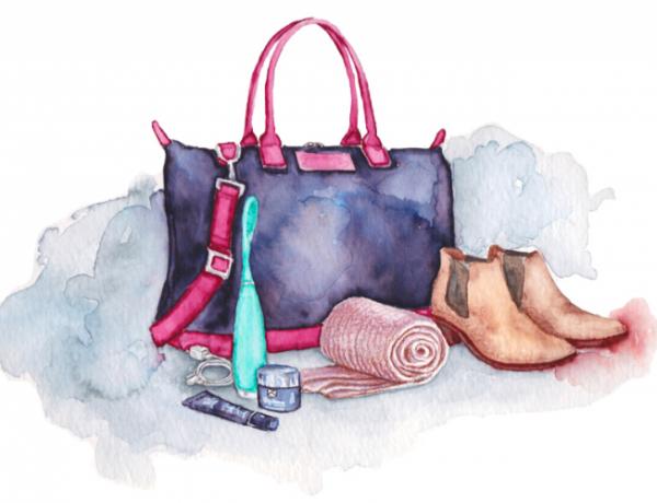 geanta de mana pentru avion